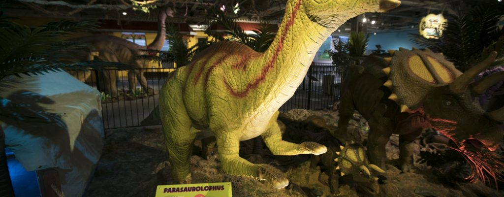 Dinosaur Safari Parasaurolophus